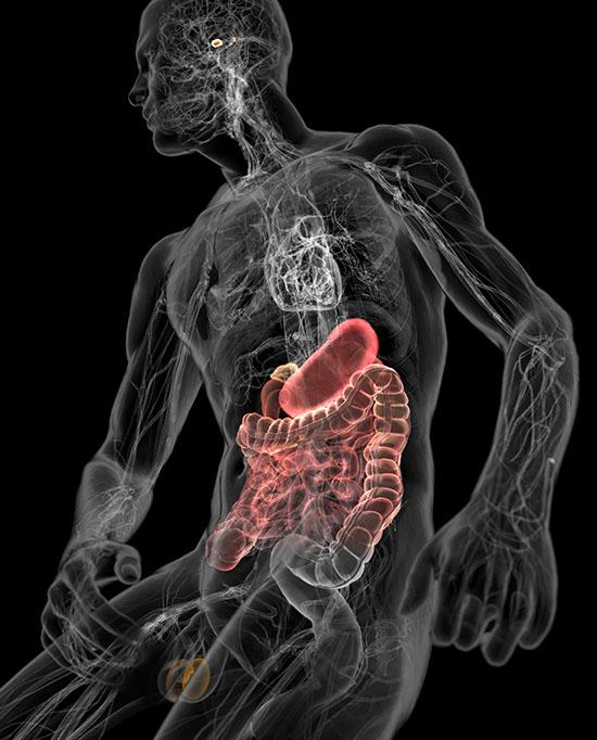 чистка кишечника от паразитов народными средствами